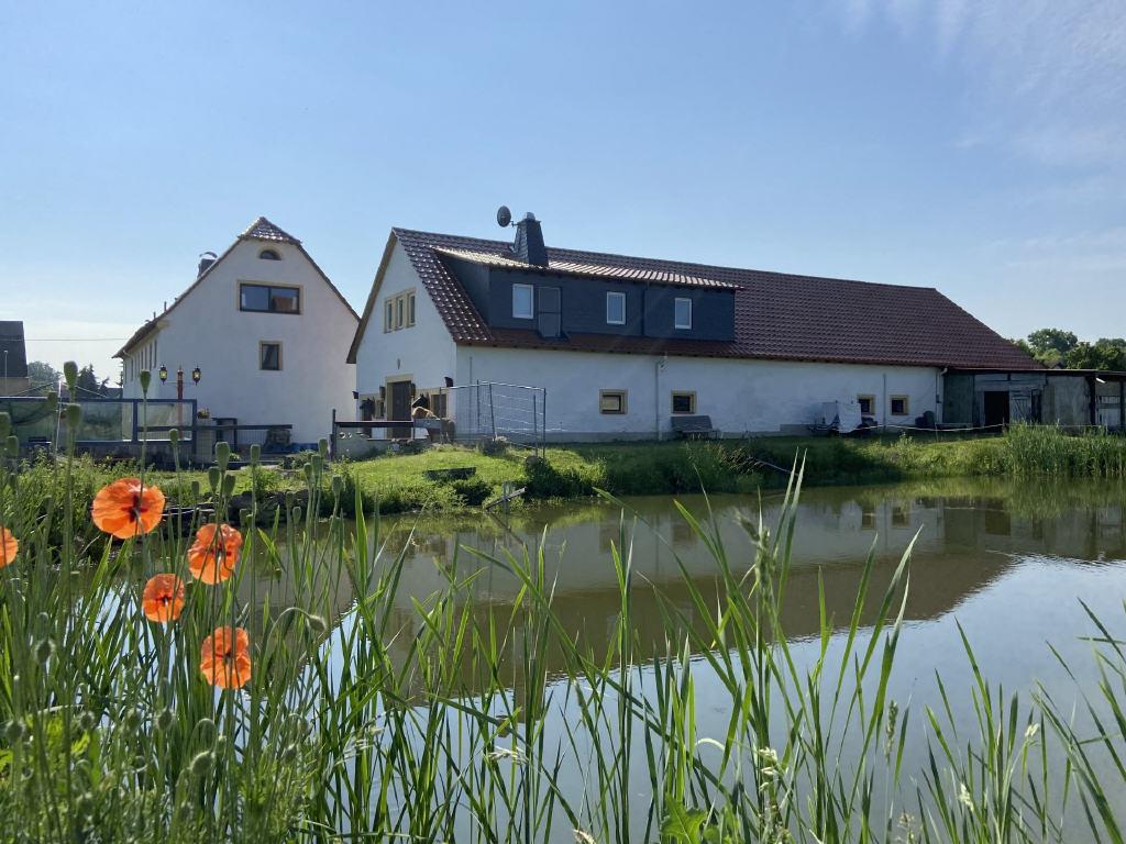 Traumhaftes Grundstück mit großem Wohnhaus (4 WE) und Scheune +++ vielseitige Nutzungsmöglichkeiten!